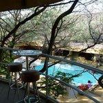 Photo de Didimala Game Lodge