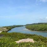 Dunas de Marapé - Jequiá da Praia (AL)
