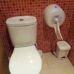 modern... but disastrous toilet roll dispenser