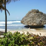 Bathsheba main beach
