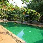 Pool in the lovely garden.