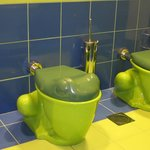 The children's toilets are in a shape of a frog!