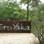 toro yaka
