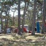 Foto di Camping Planik