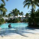 Beautiful family pool