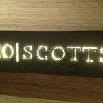 10 Scotts