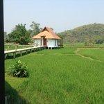 vue incroyable depuis notre bungalow au milieu de la rizière