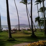 Der Palmengarten mit Zugang zum Meer