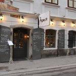 Specht in Vienna