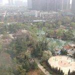 park in Luoyang