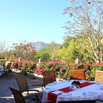 Restaurant en terrasse, vue superbe