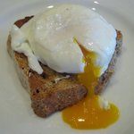 Beautiful poached egg from one of our free range Barnevelder hens