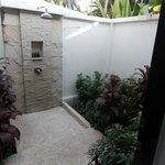 Our outside shower and garden
