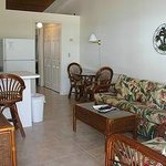Fully Furnished Livingroom and Equipped Kitchen