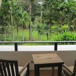 garden view room patio