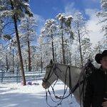 Riding in Fresh Spring Snow