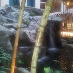 waterfall at breakfast