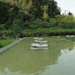 Грязный бассейн