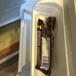 Not really what you want to find in your Room Fridge!