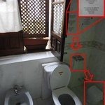 "Clean, spacious bathroom. Must dispose of ""soiled"" toilet paper in trash-receptacle & not in toi"
