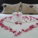 Surprise for honeymooners