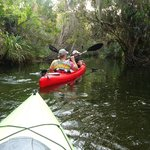 Crane Creek, Downtown Melbourne - great protected paddle for windy daysndy