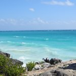 Tulum Beach by Tulum Ruins - MUST SEE!!