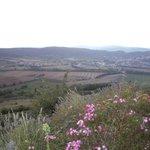 View - della natura is right!