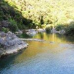fiume cecina
