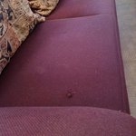 VERY dirty couch