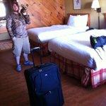 Room.  Cabin feel, comfy beds, nice linens - Pet Friendly!