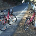 Kostenlos verfügbare Fahrräder