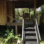Jungle hut #15
