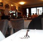 Petrocelli의 사진