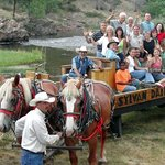 Wagon Rides and Hayrides