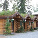 cabins with grass growing on the roofs!!