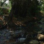 Rio Cercano
