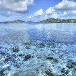 Culebra reef shot