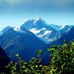 Mt Tasman view
