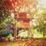 Our rustic, handbuilt treehouse