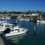 Napier Harbour