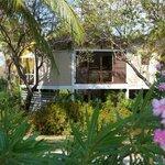 Tree House Cottage - Room 9