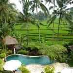 Blick vom Pool und Pavillon auf Reisterrassen