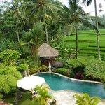 Pool und Fruehstuecks Pavillon