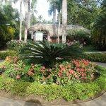 focal point in garden