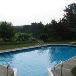 Salt filtered swimming pool