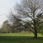 Kew Garden in winter