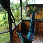 The hammock