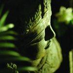 Tranquil Sacred Garden