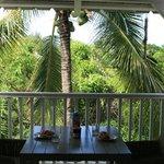 Frühstück unter Kokospalmen
